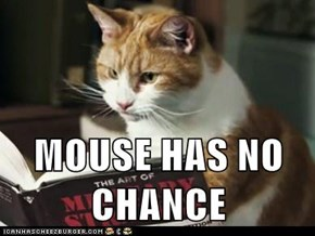 MOUSE HAS NO CHANCE