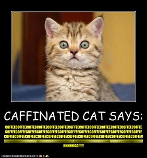 CAFFINATED CAT SAYS: