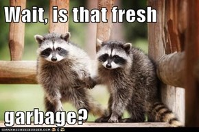 Wait, is that fresh   garbage?