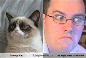 Grumpy Cat Totally Looks Like The Angry Video Game Nerd
