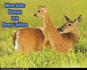 Yes Deer...