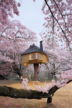 Tetsu Teahouse, Hokuto Japan