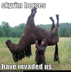 skyrim horses   have invaded us