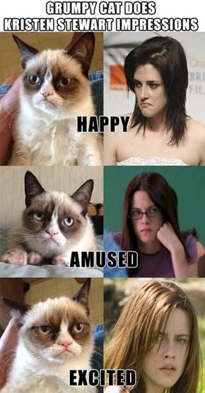 Grumpy Cat's Kristen Stewart Impressions