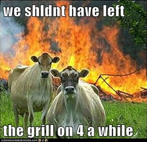 we shldnt have left  the grill on 4 a while