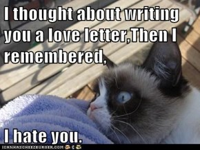 I thought about writing you a love letter,Then I remembered,   I hate you.