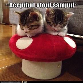 ~Acepibul stoul sampul~