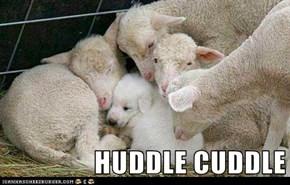 HUDDLE CUDDLE