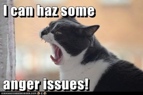 I can haz some  anger issues!