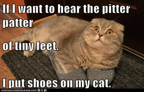 If I want to hear the pitter patter  of tiny feet. I put shoes on my cat.
