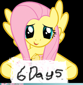 Tell them Fluttershy!