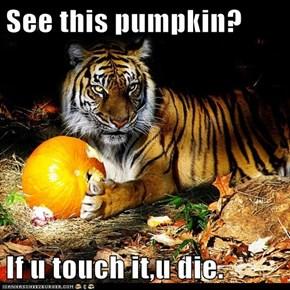 See this pumpkin?  If u touch it,u die.