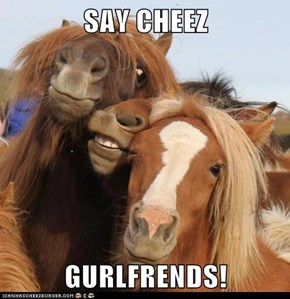SAY CHEEZ  GURLFRENDS!