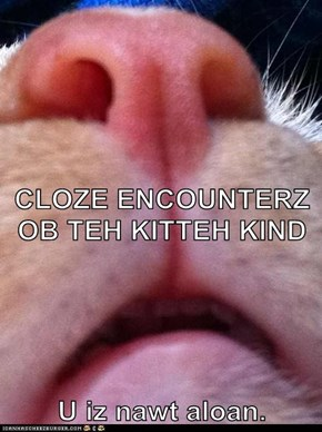 CLOZE ENCOUNTERZ OB TEH KITTEH KIND