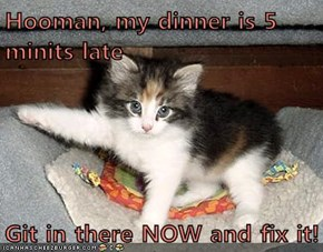 Hooman, my dinner is 5 minits late  Git in there NOW and fix it!