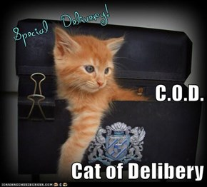 C.O.D. Cat of Delibery