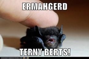 ERMAHGERD  TERNY BERTS!