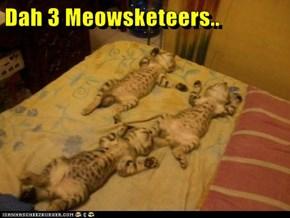 Dah 3 Meowsketeers..