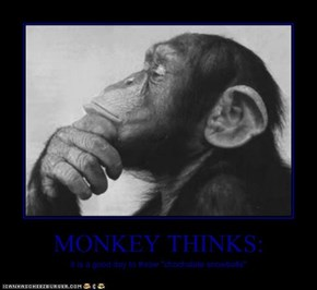 MONKEY THINKS: