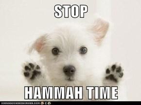 STOP  HAMMAH TIME