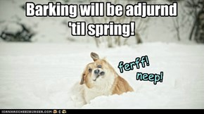 Snow! Cold!