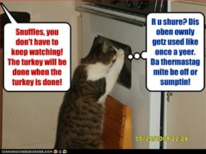 If u want, I can gib it da kitteh toof test for doneness!