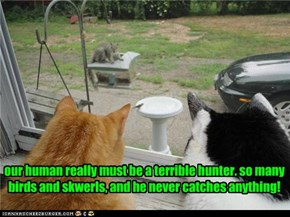 our human really must be a terrible hunter. so many birds and skwerls, and he never catches anything!