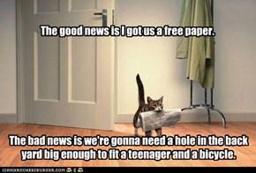 BAD KITTY! VERY BAD KITTY!