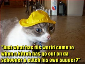 """""""Just what has dis world come to when a kitteh has go out on da schooner & catch his own supper?"""""""