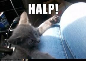 HALP!