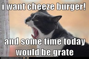 i want cheeze burger!  and some time today would be grate