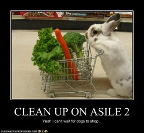 CLEAN UP ON ASILE 2