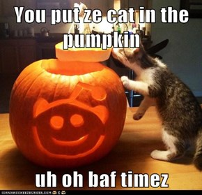 You put ze cat in the pumpkin  uh oh baf timez
