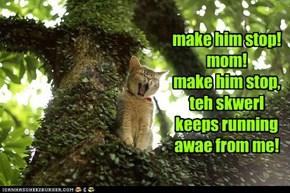 make him stop! mom! make him stop, teh skwerl keeps running awae from me!