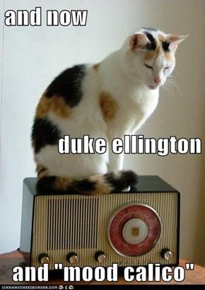 "and now duke ellington and ""mood calico"""