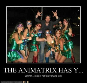THE ANIMATRIX HAS Y...