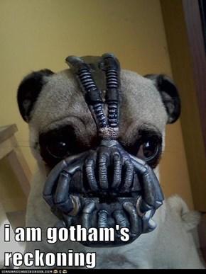 i am gotham's reckoning