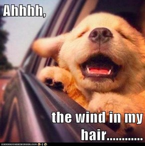 Ahhhh,  the wind in my hair............