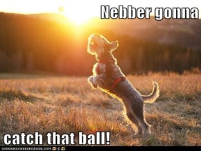 Nebber gonna  catch that ball!