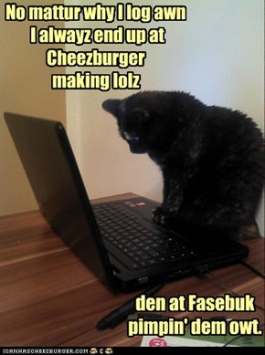 No mattur why I log awn  I alwayz end up at Cheezburger making lolz