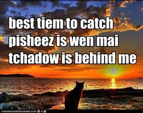 best tiem to catch pisheez is wen mai tchadow is behind me