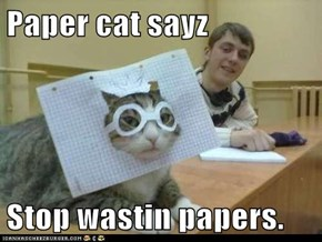 Paper cat sayz  Stop wastin papers.