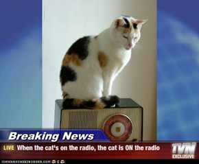 Breaking News - When the cat's on the radio, the cat is ON the radio