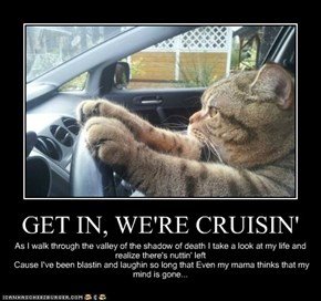 GET IN, WE'RE CRUISIN'