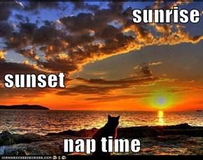 sunrise sunset nap time