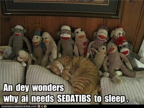 An  dey  wonders   why  ai  needs  SEDATIBS  to  sleep .
