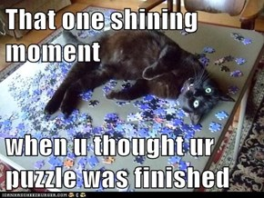 That one shining moment  when u thought ur puzzle was finished
