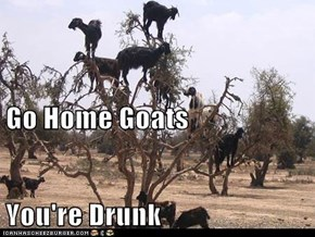 Go Home Goats You're Drunk