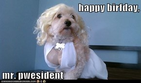 happy birfday,  mr. pwesident
