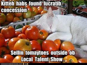 Kitteh  habs  found  lucratib  concession